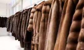 Как нововведения в меховой отрасли скажутся на ценах на шубы и дубленки