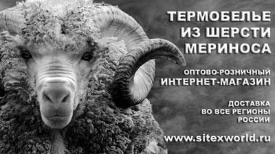 Ситекс, ООО