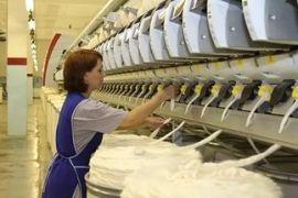 «Камышинский текстиль» начал переработку экспериментального хлопчатника, выращенного в Волгоградской области
