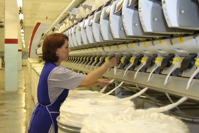 «Камышинский текстиль» будет перерабатывать хлопок из Астраханской и Волгоградской областей