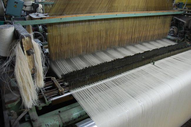 Минпромторг предложил субсидировать производящие и покупающие льняную продукцию компании